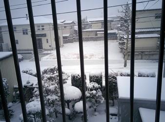 仙台の積雪
