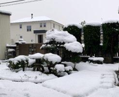 4月に積雪